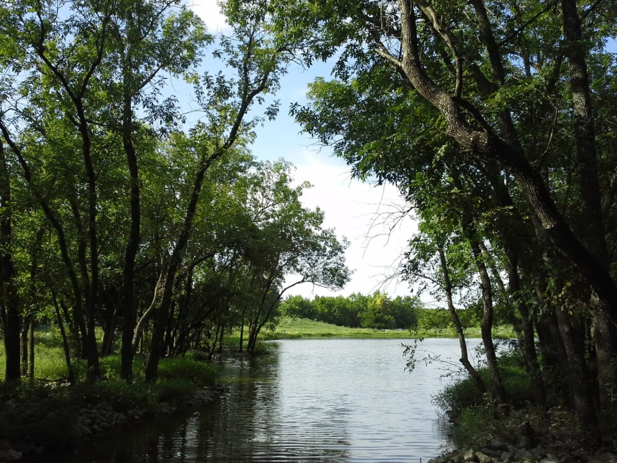 40+- Acres Near Andover; Stocked Pond, Timber, Pasture & Buildings For Sale Auction