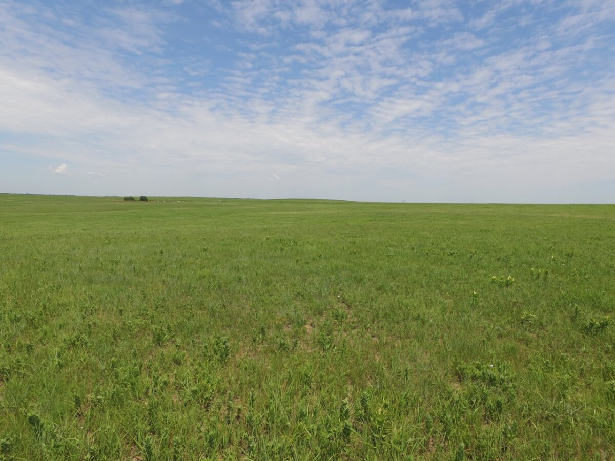 1490 Acres Elk County Kansas Cattle Grazing Ranch