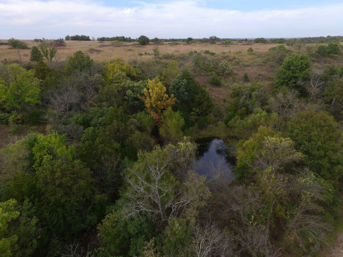 54.3 Acres Greenwood County, Kansas Hunting & Recreation Land For Sale