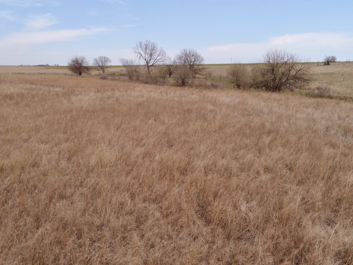 40+- Acres Greenwood County, Kansas Land For Sale