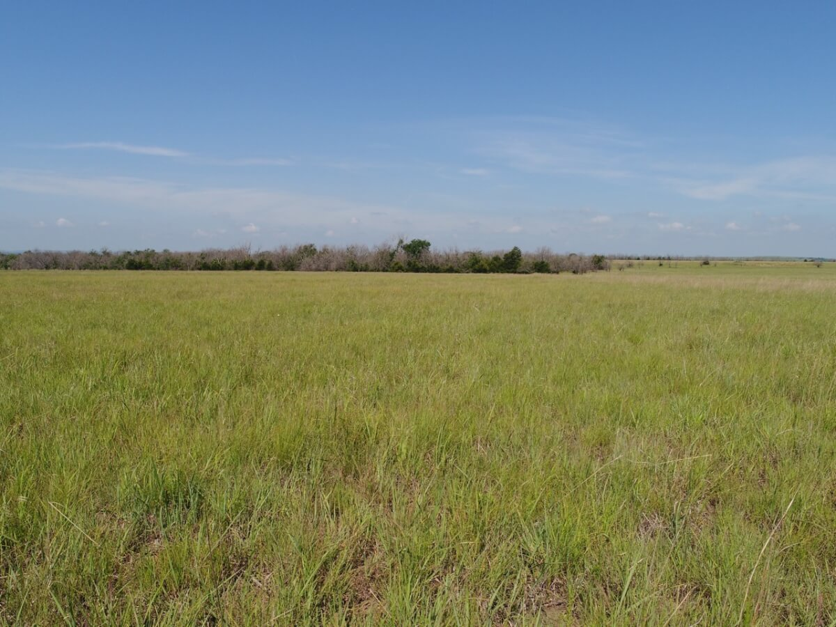 146+- Acres Greenwood County Kansas Pasture and Hunting Land