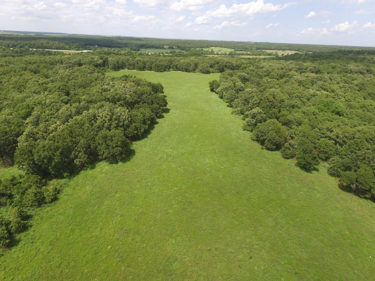 40 Acres Greenwood County, Kansas Hunting Land For Sale