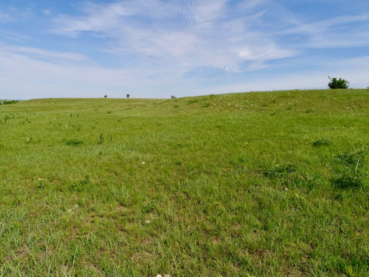 160+- Acres Marion County Land For Sale Near Peabody Kansas