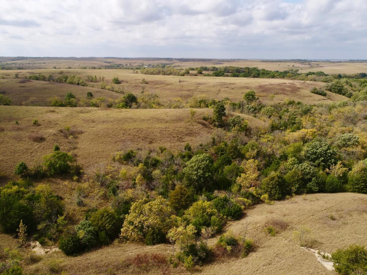 246+- Acres Greenwood County Kansas Pasture and Hunting Land For Sale