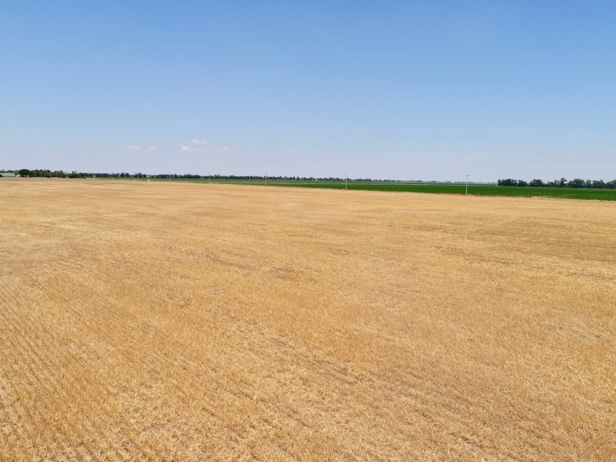 160+- Acres Harvey County Kansas Tillable Land North Of Mount Hope
