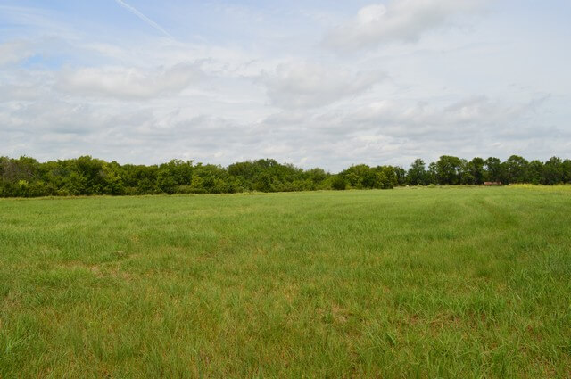 20+- Acres Butler County, Kansas Land For Sale Near El Dorado