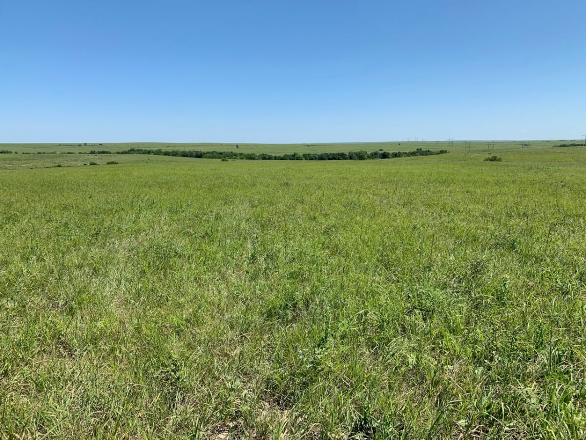 640+- Acres Flint Hills Land Auction-Greenwood County, Kansas