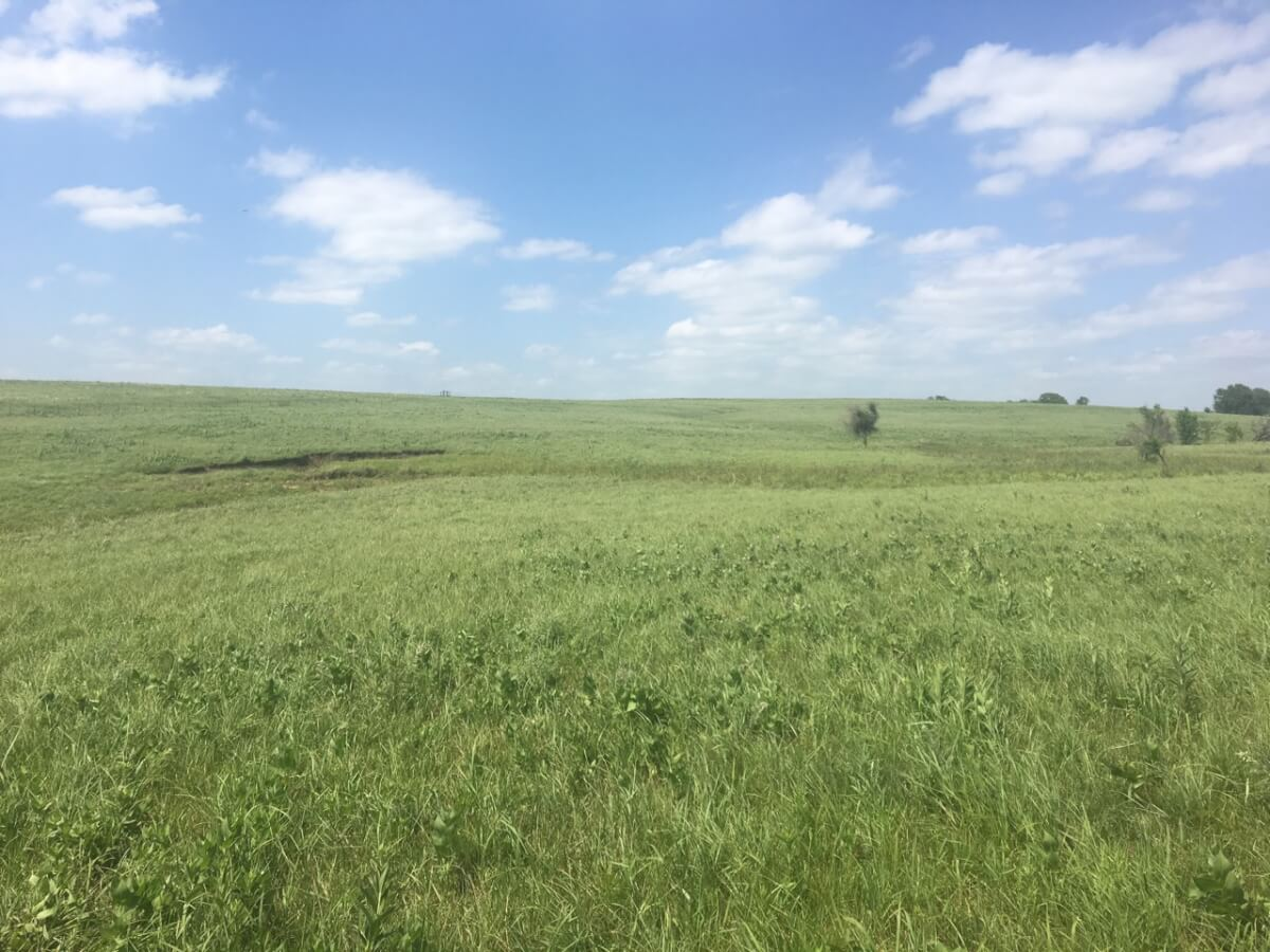 160+- Acres Greenwood County Kansas Land For Sale Near Madison