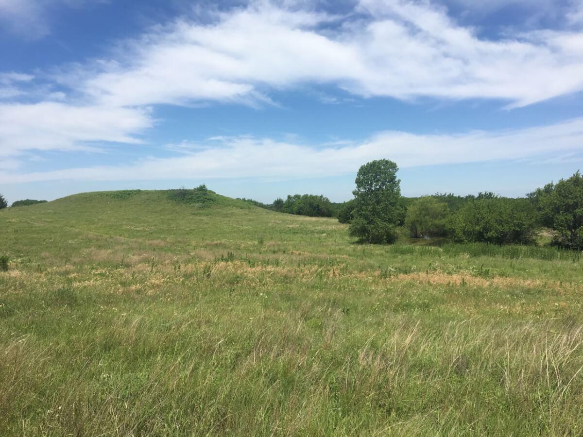 81.4 Acres Scenic Land For Sale Near Douglass in Butler County Kansas
